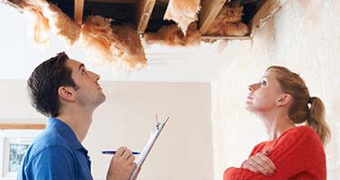 Free Mold Inspections Grand Rapids, MI