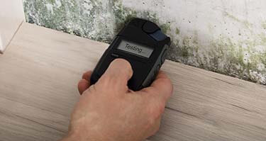 Mold and Air Testing Services Detroit Michigan