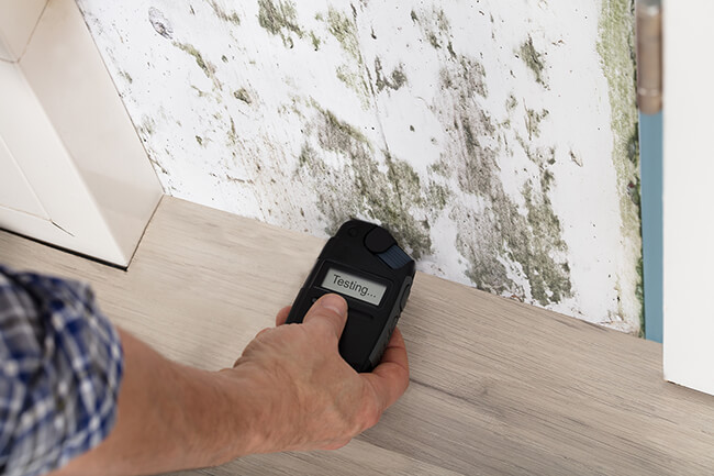 Top 4 Reasons You Need A Mold Inspection BEFORE You Buy Your Home