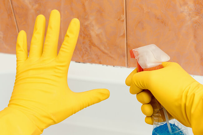 STOP! You Shouldn't Use Bleach on Mold