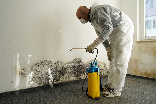 Remediation Technician applying product with a sprayer